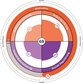 Das Rad der emotionalen Intelligenz EQ