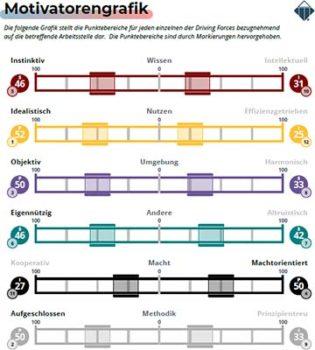 Talent-Insights-Job_Motivationsgrafik