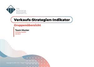 Musterbericht_Verkaufs-Strategien-Indikator_VSI3_Gruppenübersicht_de